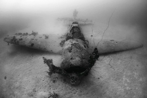 Wreck of a Jill Torpedo Bomber, Chuuk Lagoon (Truk), Micronesia. 